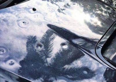 Hail Damaged Car Hood